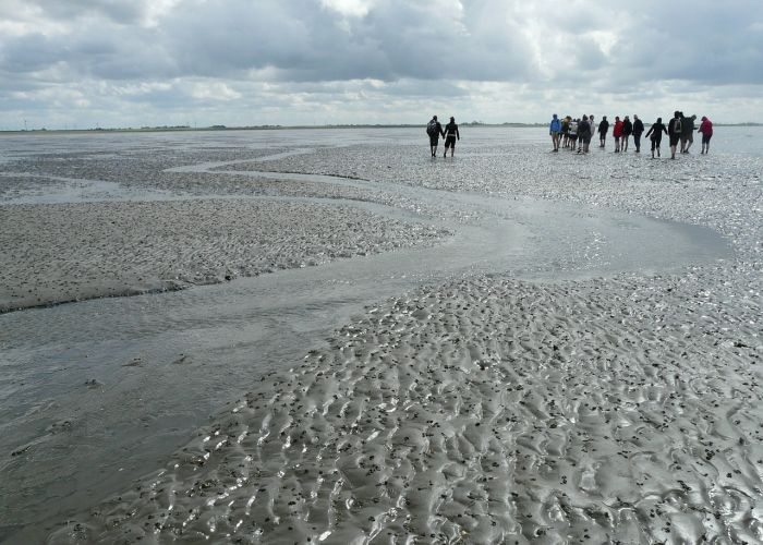 mudflat-hiking-700-500